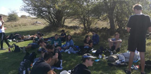 Pause picnic